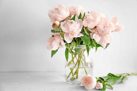 Fleuriste à La Bassée